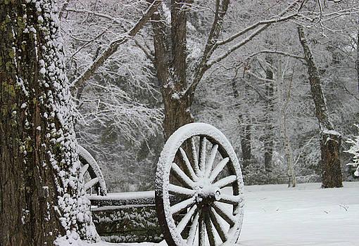 Michael Mooney - Wagon Wheel Snow-Zoom
