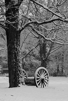 Michael Mooney - Wagon Wheels Snow-Full