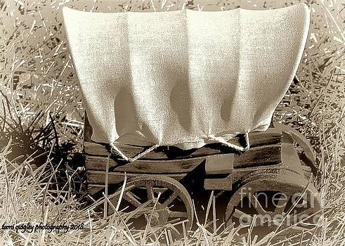 Tami Quigley - Wagons Ho