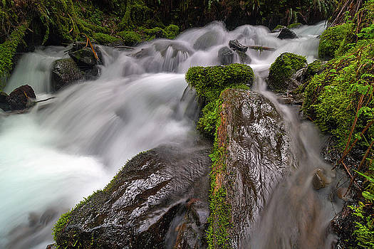 Wahkeena Creek by David Gn