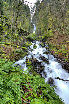 Wahkeena Falls Oregon Waterfall by Dustin K Ryan