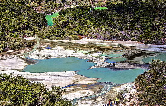 Venetia Featherstone-Witty - Wai 0 Tapu, New Zealand