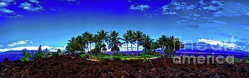 Waikoloa Beach Golf Course lava and palm trees  by Tom Jelen