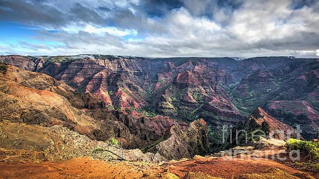 Waimea Canyon Kauai Hawaii by Dustin K Ryan