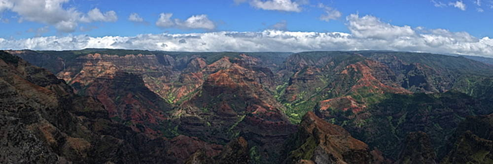 Waimea Canyon Panorama by Richard Hinds