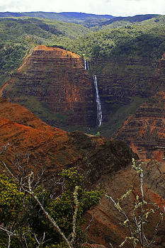 Waimea Canyon Waterfall by Richard Hinds