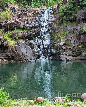 Waimea Waterfall by Cheryl Del Toro