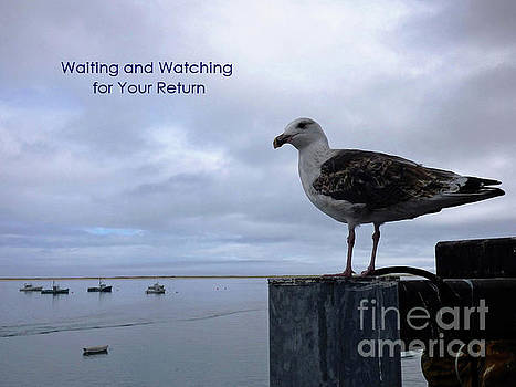 Sharon Williams Eng - Waiting and Watching Card