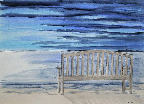 Waiting for Nightfall by Cynthia Schoeppel
