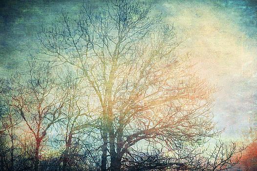 Waiting for Rain by Michele Cornelius