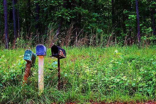 Waiting for the Mail by Beverly Hammond