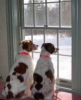 Waiting for the Snow Plow by Linda Drown