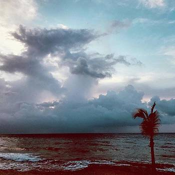 Before the Storm by Gina Callaghan