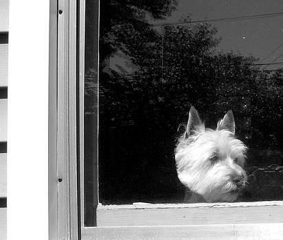 Waiting by Gerard Yates