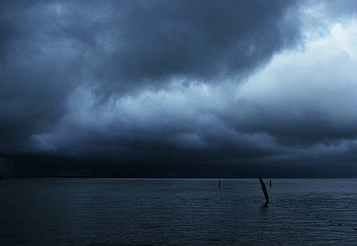 Linda Shafer - Waiting Out The Storm