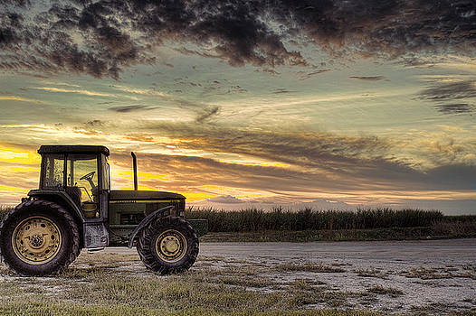Waiting to Harvest  by Roberto Aloi