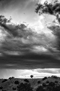 Mary Lee Dereske - Waldo Canyon New Mexico
