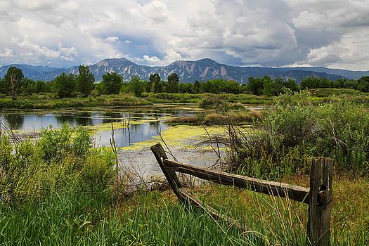 Waldon Ponds by Juli Ellen