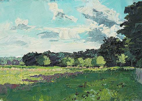 Waldrand edge of forest by Martin Stankewitz