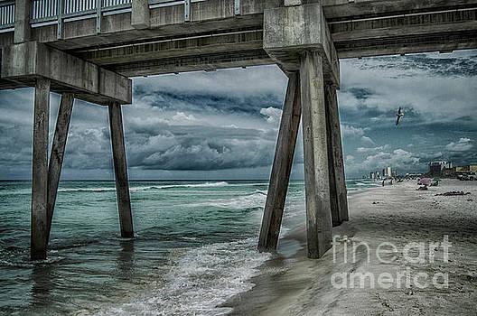 Walk Along the Seashore by Judy Hall-Folde