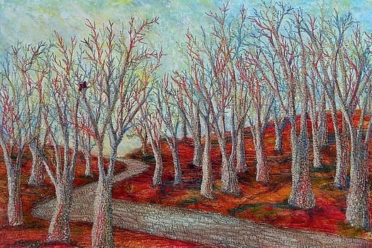 Ana Sumner - Walk among the trees