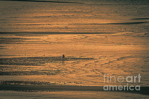 Walk at low tide at Fundy Bay by Claudia M Photography