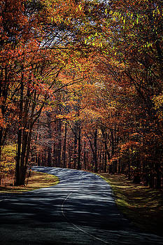 Walk In the Park by Jim Johnson