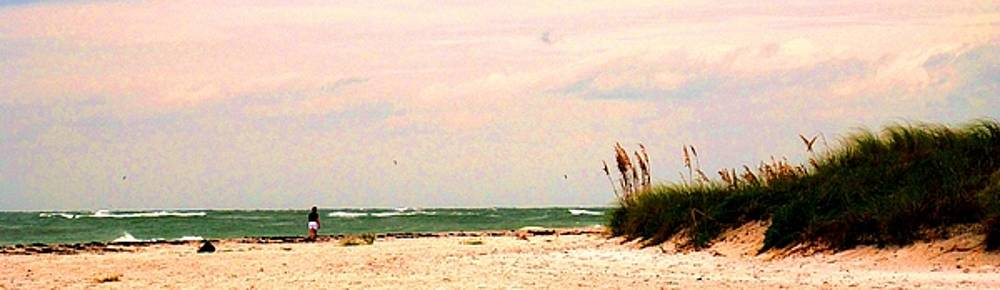 Ian  MacDonald - Walk The Beach