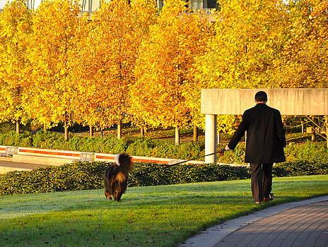 Walkies in Autumn by Caroline Reyes-Loughrey