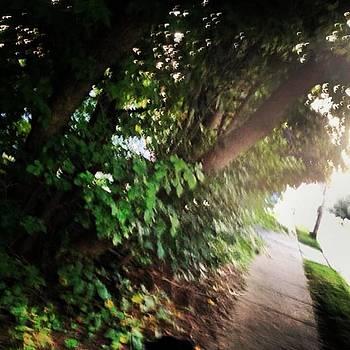 Walkin Down The Street by Bridgett Dockray