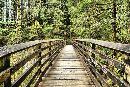 Walking across the wooden bridge by Jeff Swan