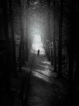 Walking Alone by Celso Bressan