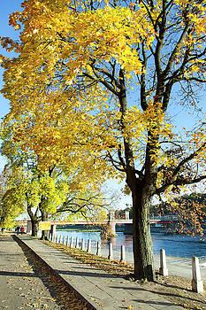 Ramunas Bruzas - Walking Along The River