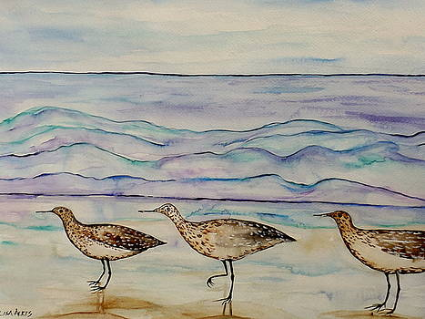 Walking Back The Waves by Lisa Aerts
