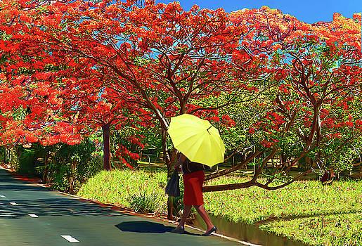Walking Home by James  Mingo