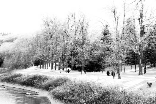 Walking in a Winter Wonderland by Cathy Beharriell