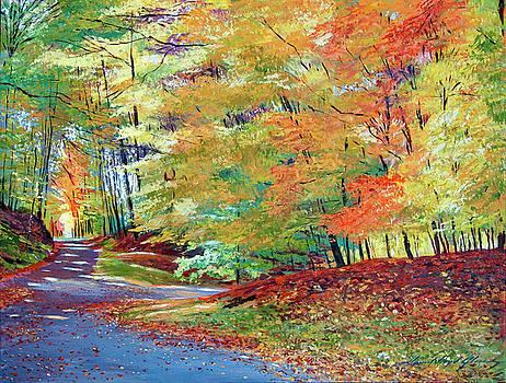 Walking In Autumn by David Lloyd Glover