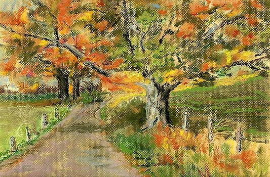 Walking Into Fall by Ferne McGinnis