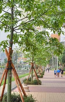 Walking Macau China by Bill Hamilton