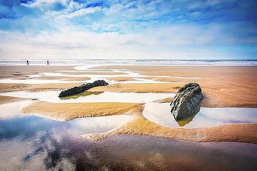 Svetlana Sewell - Walking on a Beach