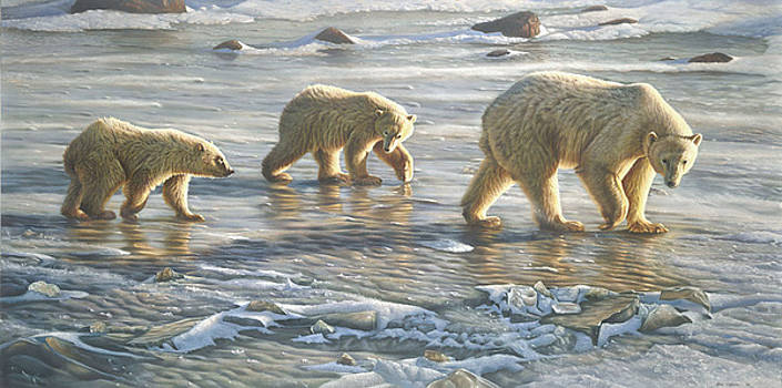 Walking On Ice by Eric Wilson