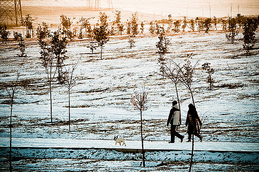 Walking on the Snow by Felix M Cobos