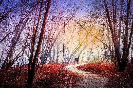 Walking on the Trail by Debra and Dave Vanderlaan