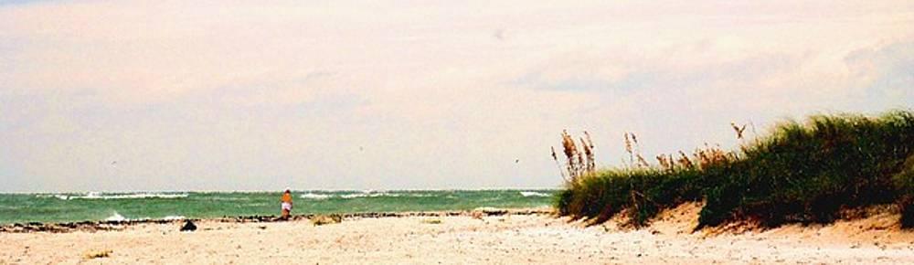 Ian  MacDonald - Walking the Beach