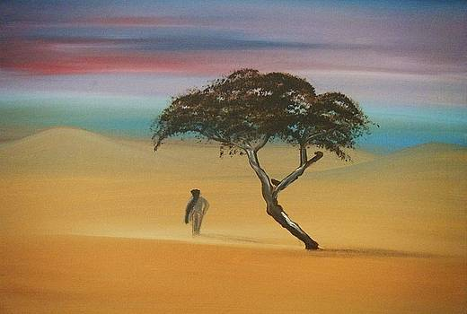 Walking the dessert by Catherine Eager
