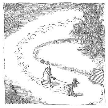 Walking the Dog by John O'Brien