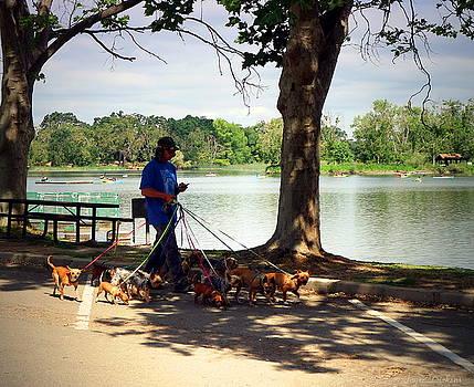 Joyce Dickens - Walking The Dog Lodi Style