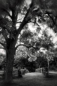 Jason Politte - Walking the Path - Arkansas - Pea Ridge Military Park