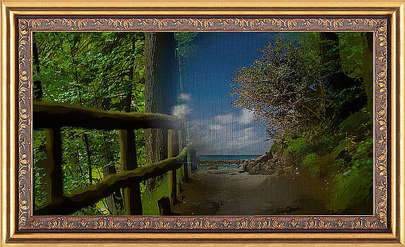 Walking Track To The Coast by Clive Littin