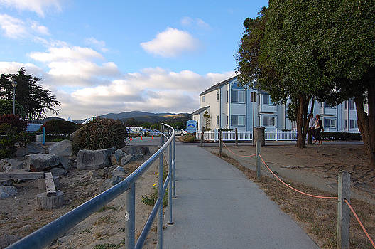 Walkway from Pillar Point Harbor by Carolyn Donnell
